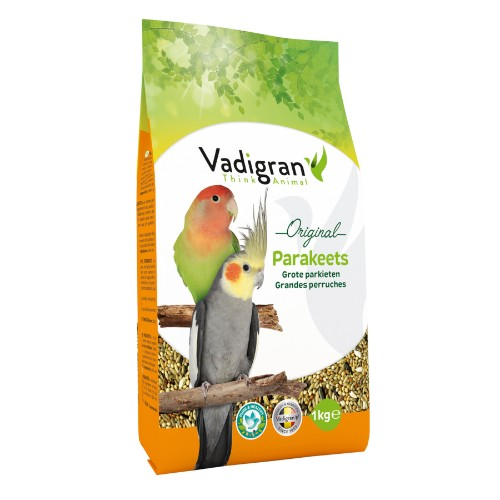 animazoo_vadigran-grandes-perruches