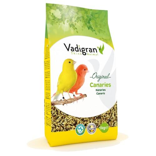 animazoo_vadigran-canaris